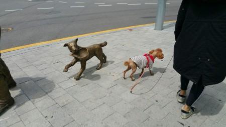 犬のオブジェと犬