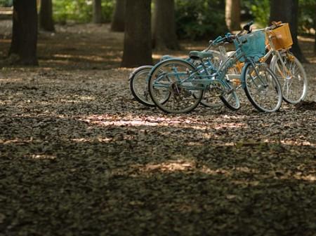自転車-450x337[1]