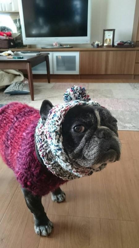 編み編みマルシェJIN
