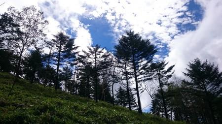 唐松尾山3